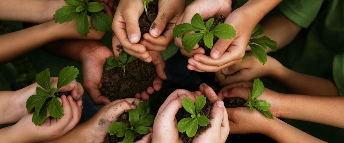 environmental-awareness-kids